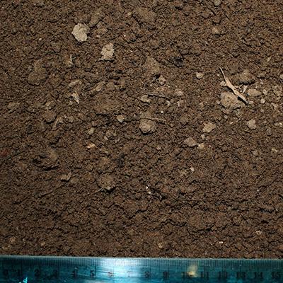 native soil for sale